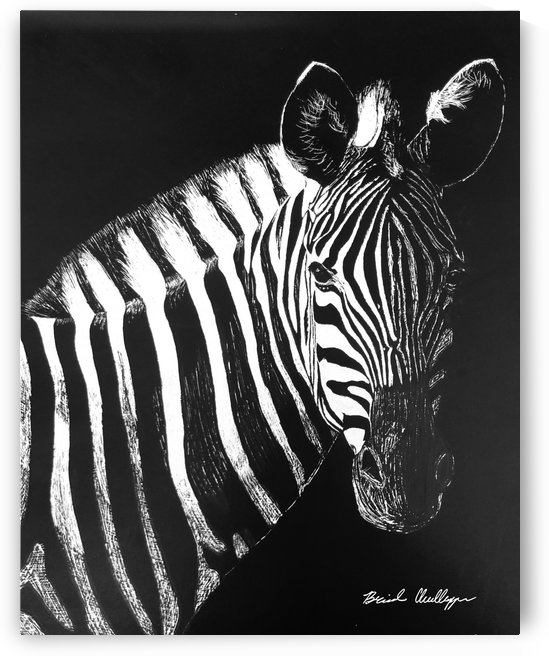 Zebra Portrait by Brinda Chellappan