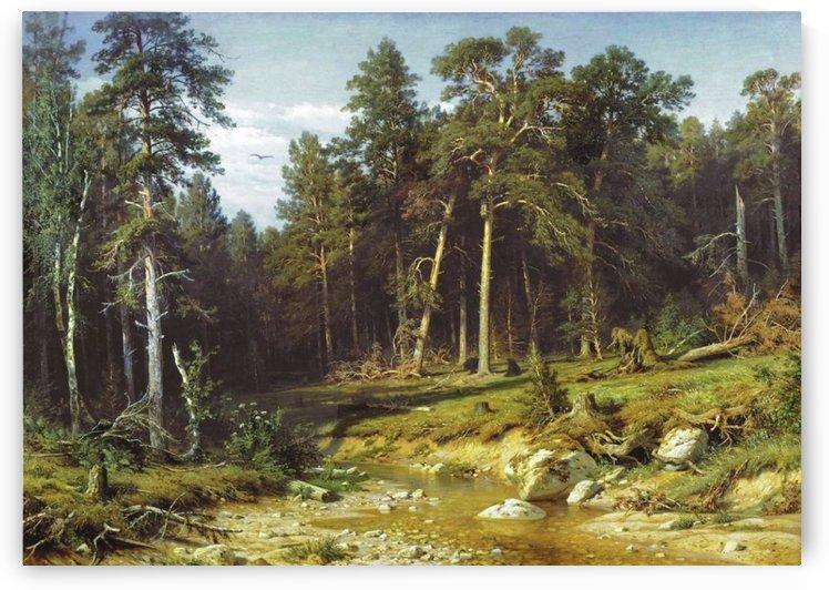 Pine Forest in Viatka Province by Ivan Shishkin