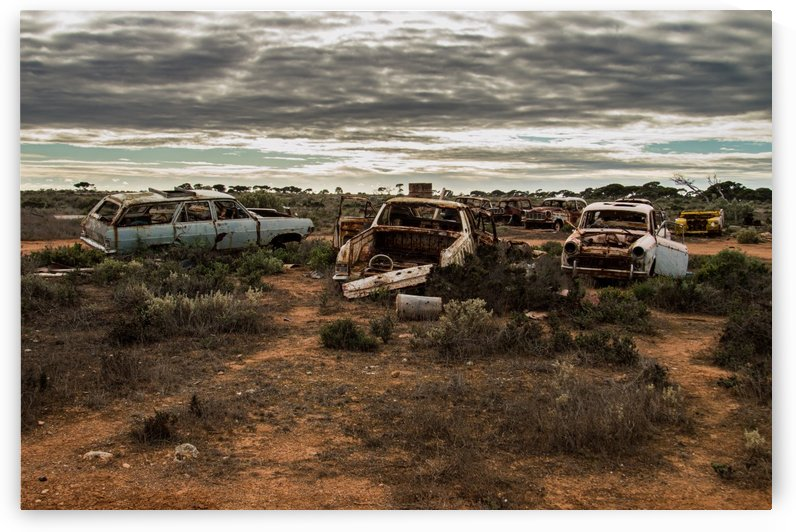 Vintage Car Graveyard by TJ Weisenberger II