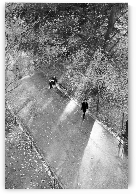 Winter Shadows Buttes Chaumont by Bill Osuch