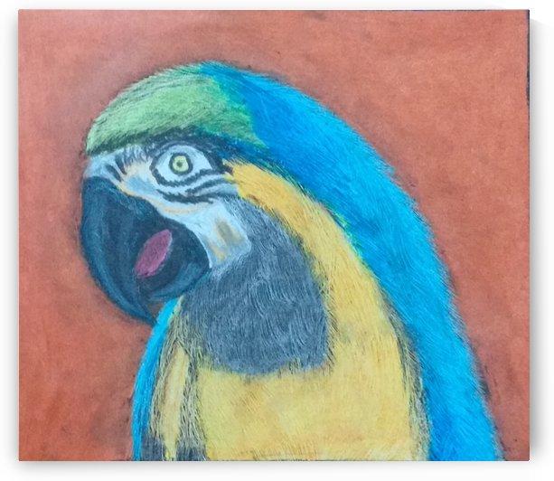 Parrot by KokilaPriya