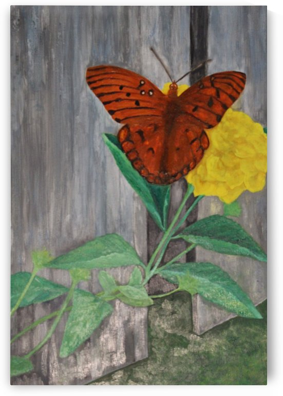 Monarch Season by Carmen Hutchinson