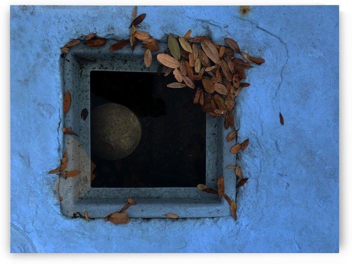 Lost Window 1.2 by Frederick Kinski