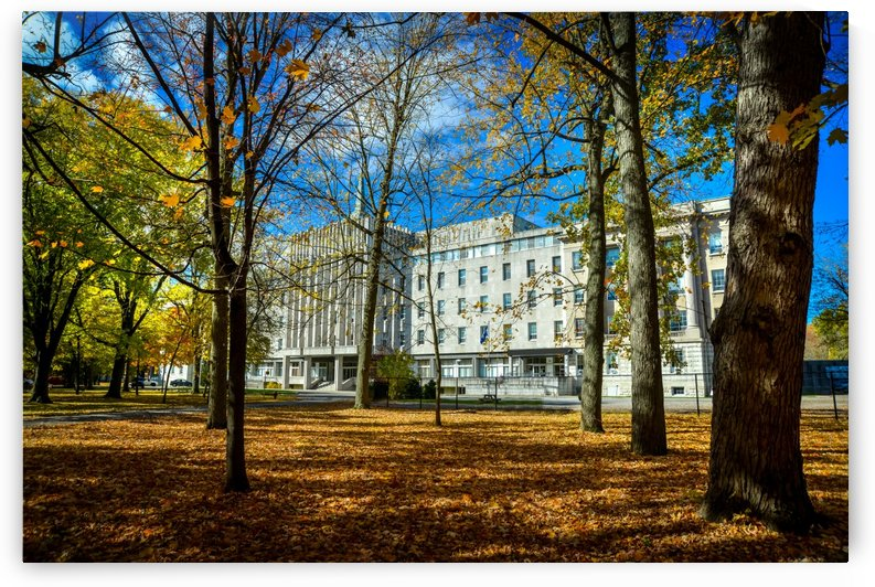Facade of the Seminary of Saint-Hyacinthe through colorful trees in autumn by Francois Lariviere
