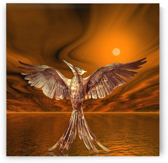 Golden Firebird by Matthew Lacey