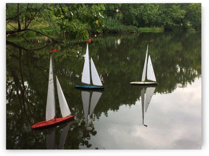 Sailboats by Lezandie de Beer