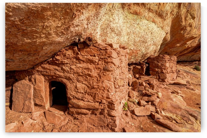 Lewis Lodge Anasazi Ruins Cedar Mesa - Utah by Gary Whitton