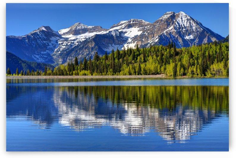Mt. Timpanogos Reflected in Silver Flat Reservoir - Utah by Gary Whitton