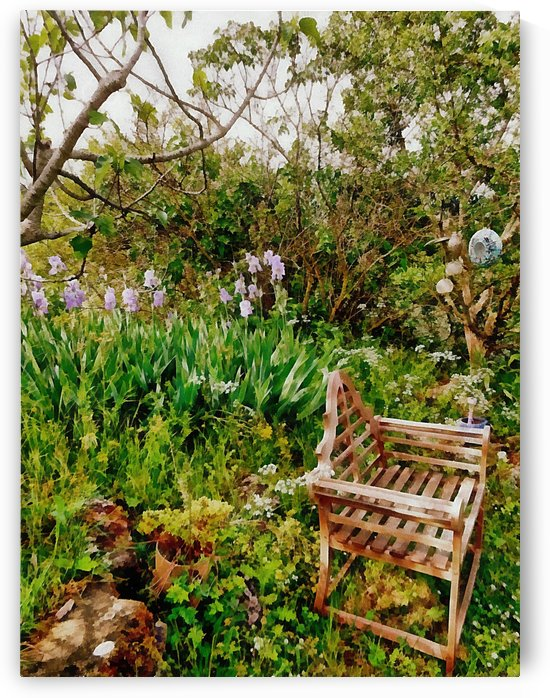 The Seat Among The Iris by Dorothy Berry-Lound