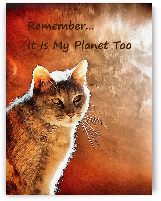 Remember It Is My Planet Too by Dorothy Berry-Lound