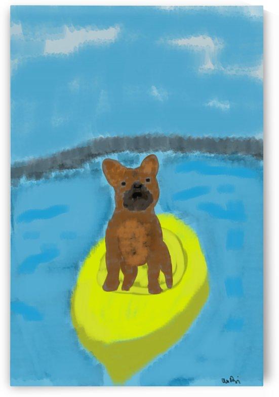 Dog in a Boat by W Scott