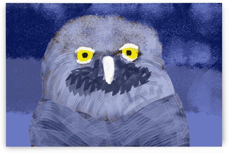 snow owl by W Scott