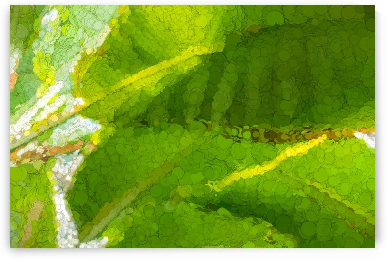 Whimsical Green Patterns - Tropical Impressions by GeorgiaM