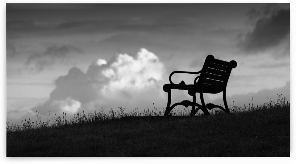 A bench with a view by Leighton Collins