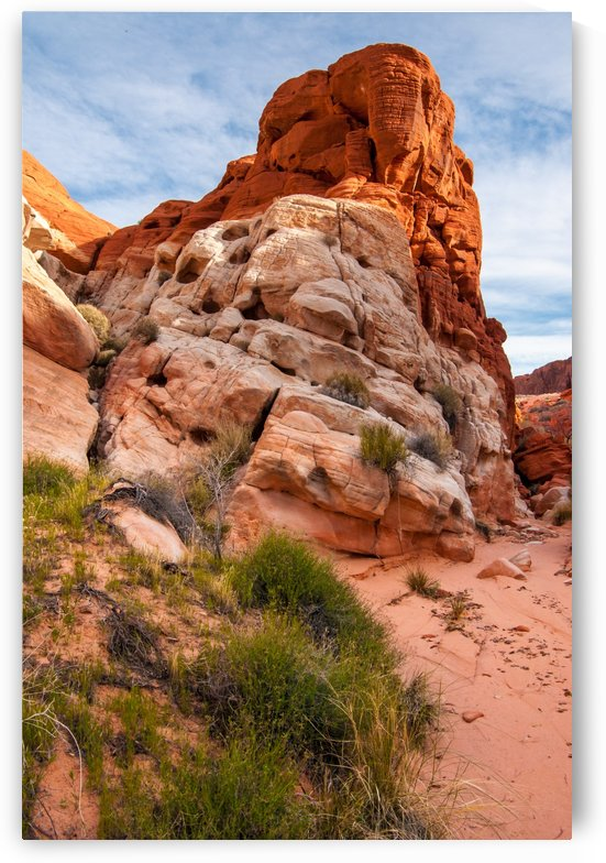 Mojave Desert Sandstone Wash - Valley of Fire - Nevada by Gary Whitton
