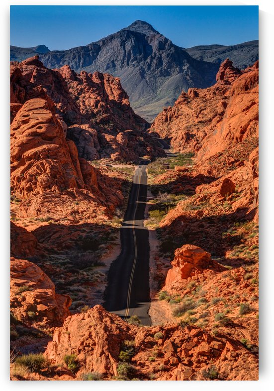 Mouses Tank Road - Valley of Fire - Nevada by Gary Whitton
