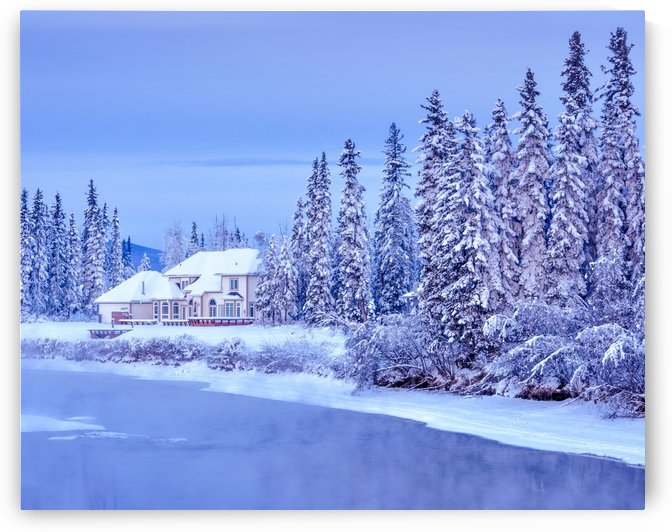 alaska winter home standard by Gary Whitton