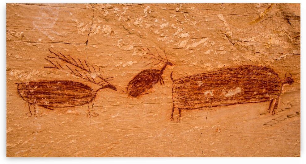 deer bison pictograph by Gary Whitton