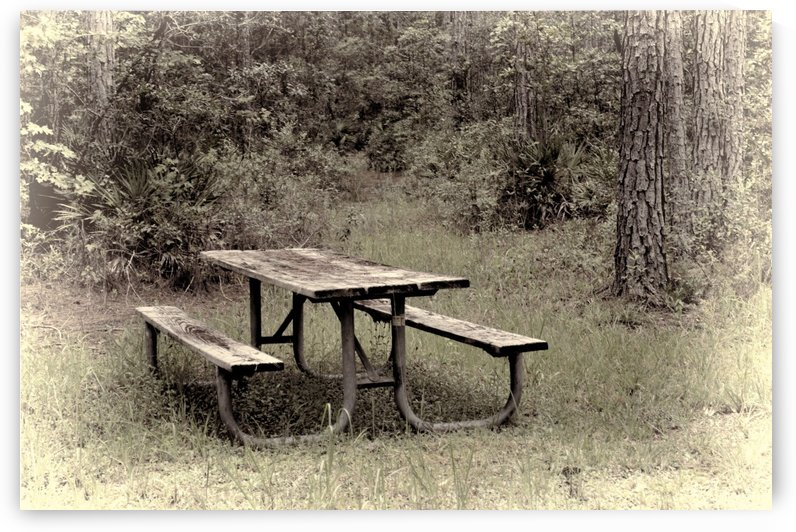 A_Lonely_Table by Maria Dale