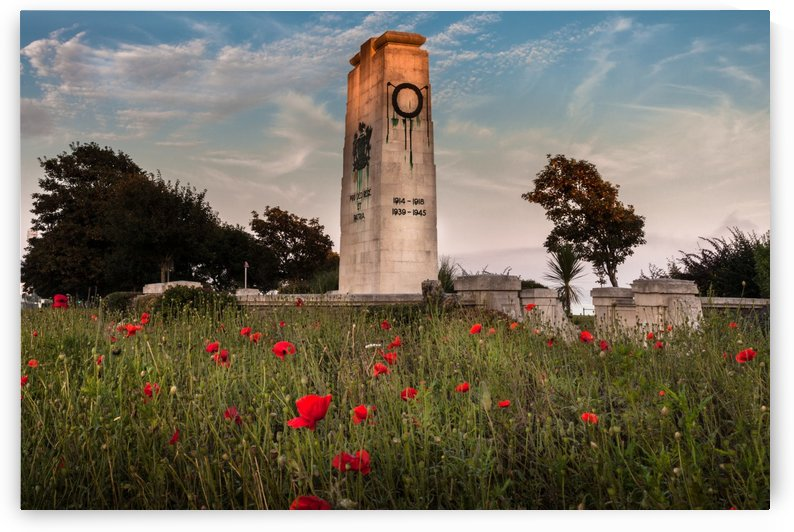Swansea cenotaph by Leighton Collins