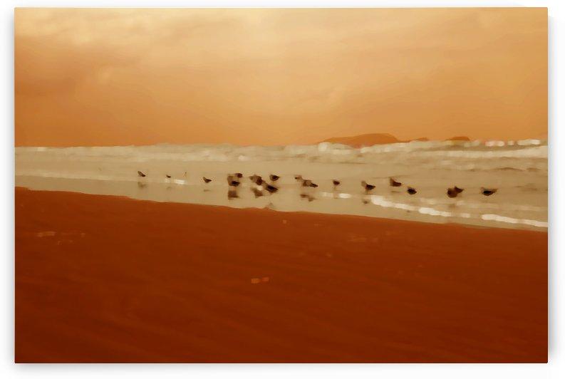 Beach XIII by Carlos Wood