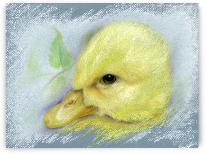 Pekin Duckling Portrait by MM Anderson