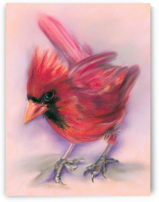 Jaunty Redbird Cardinal by MM Anderson