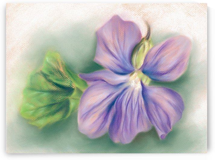 Violet and Leaf by MM Anderson