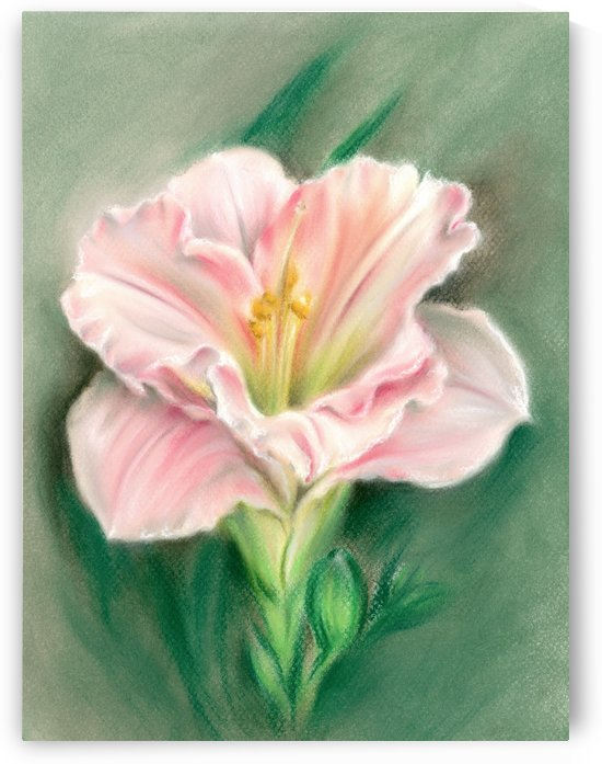 Pink Daylily and Green Buds by MM Anderson