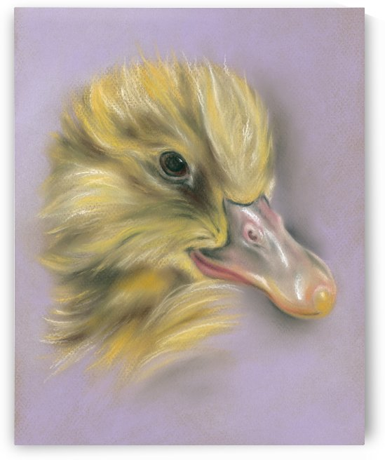 Fluffy Duckling Portrait by MM Anderson