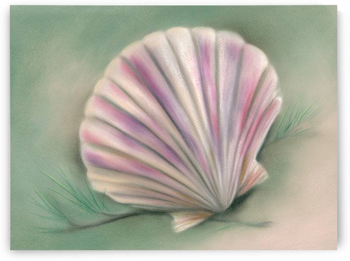 Scallop Shell with Pine Twigs by MM Anderson