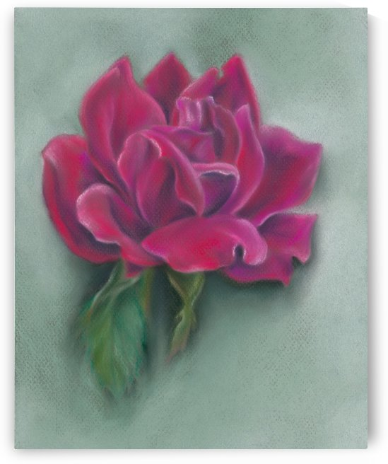 Lush Red Rose Blossom by MM Anderson