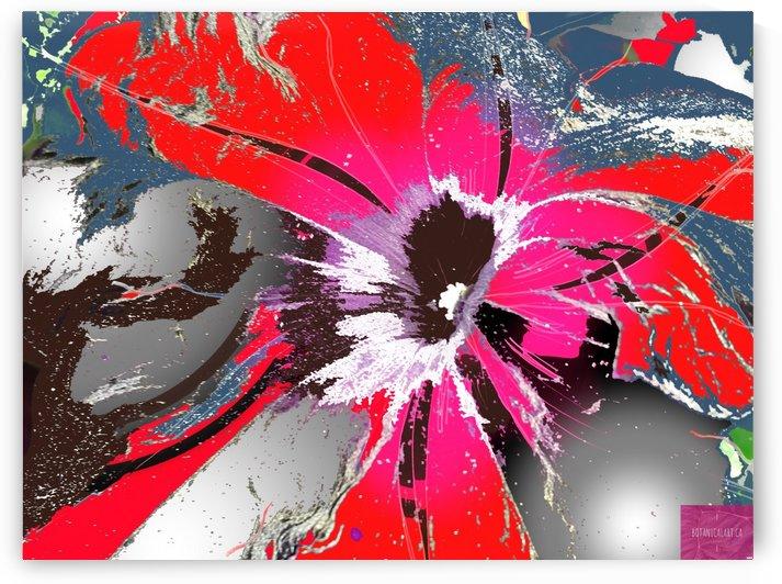 Pandemic Petunia by BotanicalArt ca