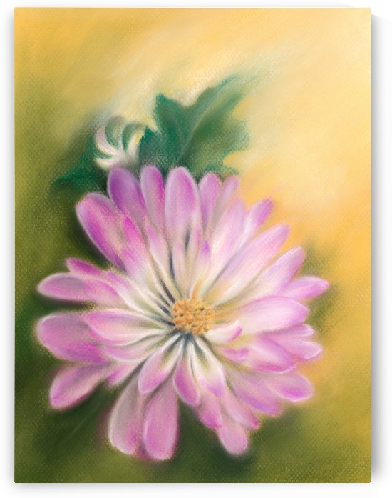 Chrysanthemum Blossom with Bud and Leaf by MM Anderson