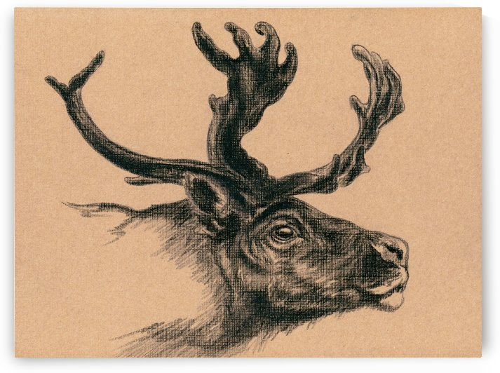 Rustic Reindeer by MM Anderson