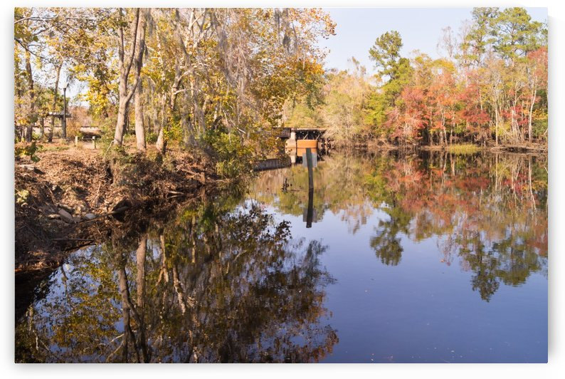 Carolina Southern Rail Bridge and Waccamaw River Autumn by MM Anderson