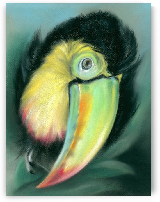 Toucan Colorful Exotic Bird by MM Anderson
