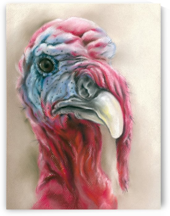 Quirky Turkey Gobbler Portrait by MM Anderson