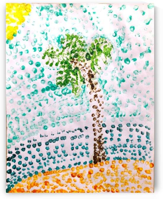 Isabella palm tree by AspireSTAR