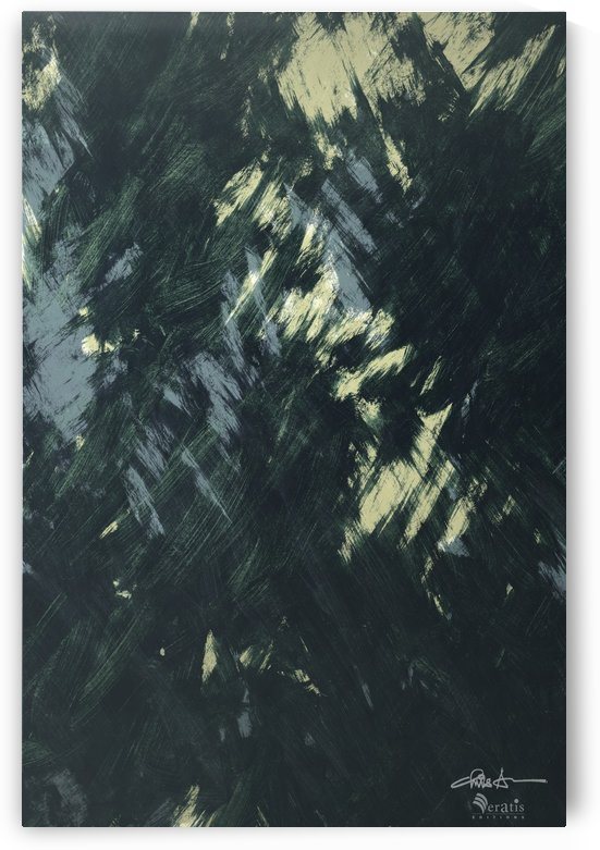 Brushed 48 Dark Forest 2x3 by Veratis Editions