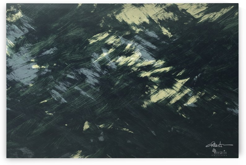 Brushed 48 Dark Forest 3x2 by Veratis Editions