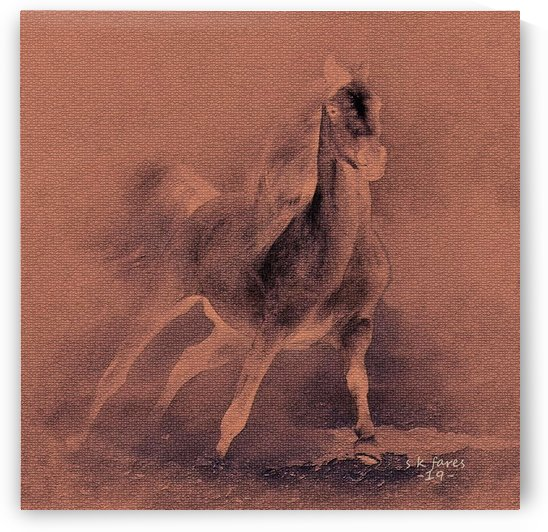 abstract cheval5 by khalid selmane fares
