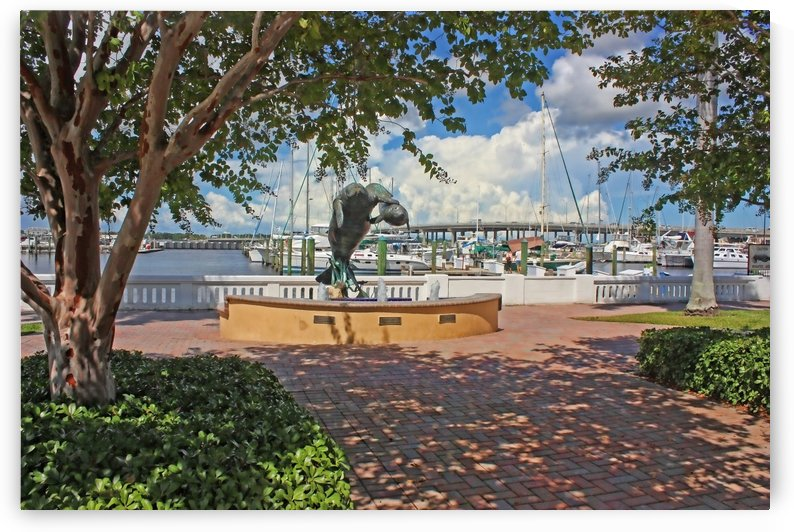 Bradenton Florida Waterfront 3  by HH Photography of Florida