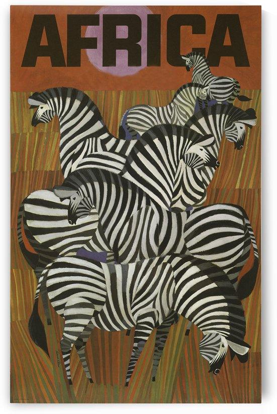 Zebra by vintagesupreme
