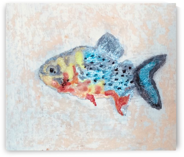 Red bellied piranha by Zaramar Paintings