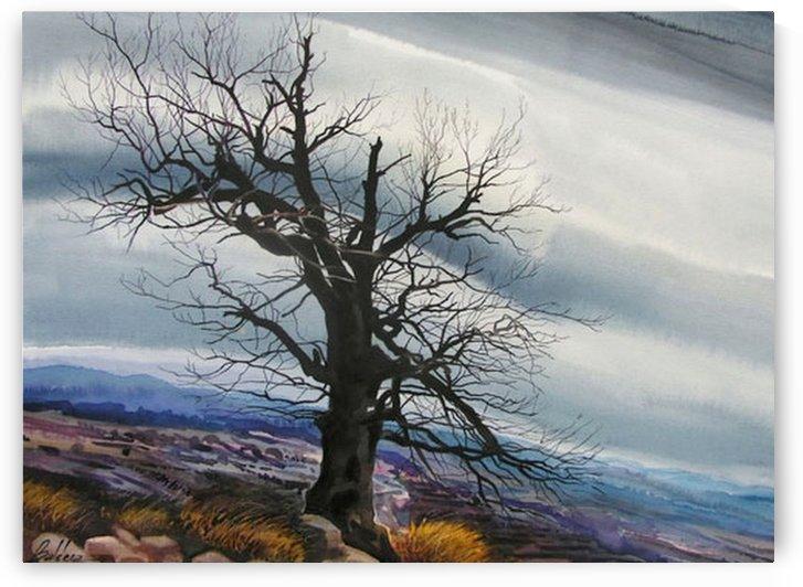The Magical Tree by Al Serino