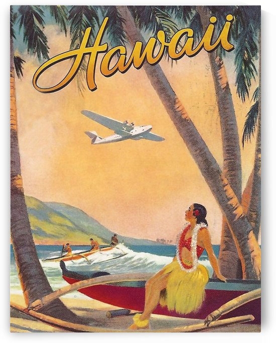 Hawaii Flight by vintagesupreme