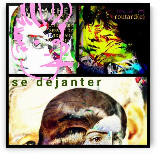 SE DEJANTER by SEBO
