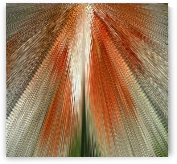 Digital Art In Shades Of Brown by ImagesAsArt By John Louis Benzin