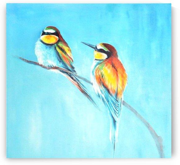 Birds by Jonathan Marsico